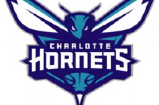 تیم شارلوت هورنتز (Charlotte Hornets)