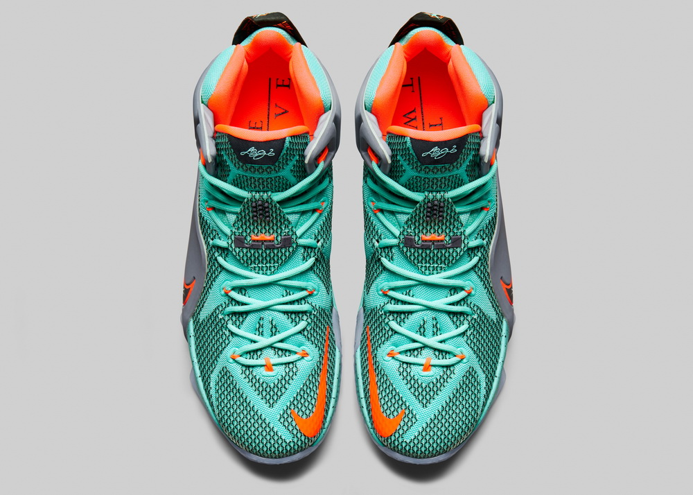کفش لبران 12